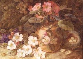 Still Life with Apple Blossom, Primula and Bird's Nest