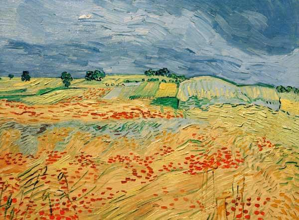 Van Gogh / Fields with Blooming Poppies