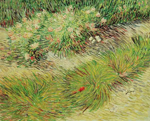 Van Gogh / Butterflies and Flowers
